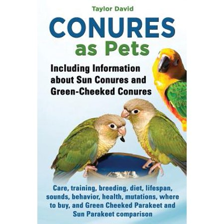 Conures as Pets - Including Information about Sun Conures and Green-Cheeked Conures](Short Information About Halloween)