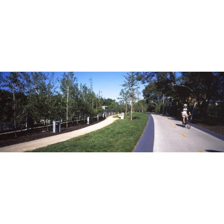 Person Riding Bicycle On Footpath In A Park The 606 Bloomingdale Trail Chicago Cook County Illinois Usa Poster Print