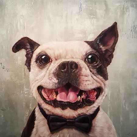 Buyartforless A Black Tie Affair Grinning Dog by Lucia Heffernan 12x12 Boston Terrier Bow-tie Art Print Poster Humor