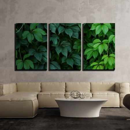 wall26 - 3 Piece Canvas Wall Art - Wall of Green Climbing Plant Full Screen as Background. Oil Painting Effect. - Modern Home Decor Stretched and Framed Ready to Hang - 24