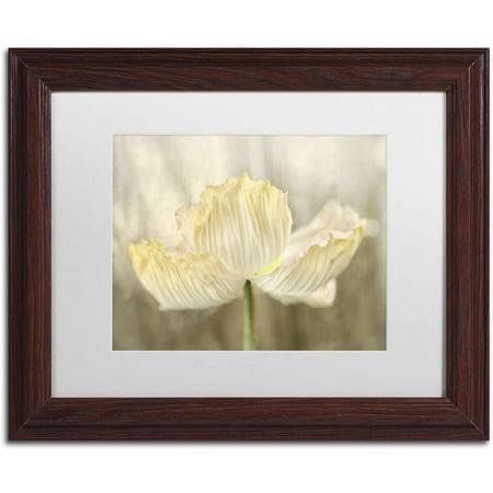 Sunshine Poppies - Trademark Fine Art 'Sunshine Poppy' Canvas Art by Cora Niele, White Matte, Wood Frame