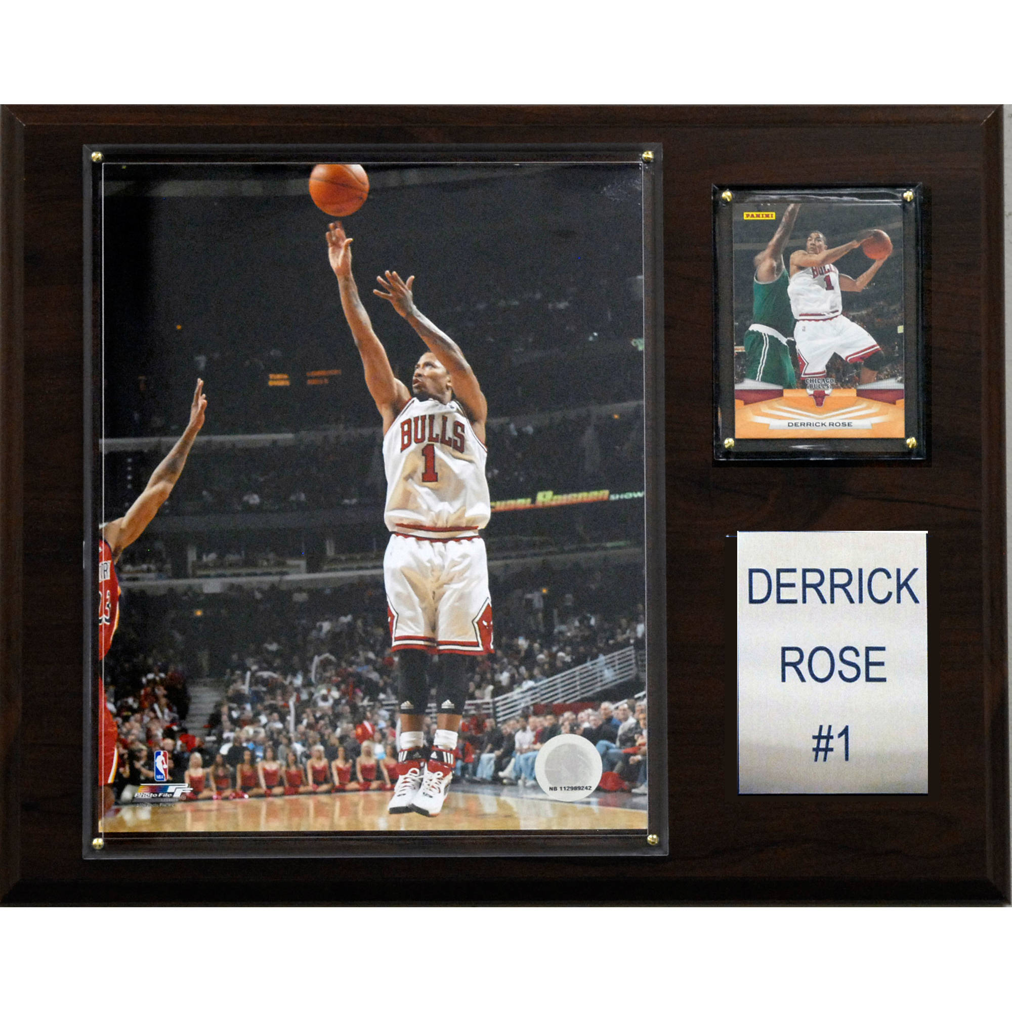 C&I Collectables NBA 12x15 Derrick Rose Chicago Bulls Player Plaque