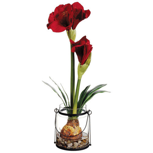 Silk Flower Depot 24'' Amaryllis with Bulb in Glass Vase