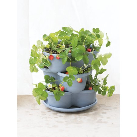 Stacking Self-Watering Strawberry