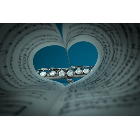 5c1f39518994 Framed Art For Your Wall Flute Musical Instrument Music Silver Plated 10x13  Frame - Walmart.com