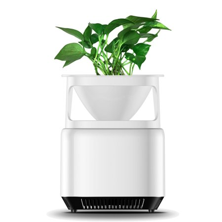 Desktop Micro Ecological Purifier Air Purifier Cleaner Sterilizer Household Negative Ion Generator Formaldehyde Mold Odor Dust Smoke Pollen Remover with Flowerpot