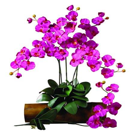 Beauty Stems - Nearly Natural Phalaenopsis Stem, Beauty, 12pc