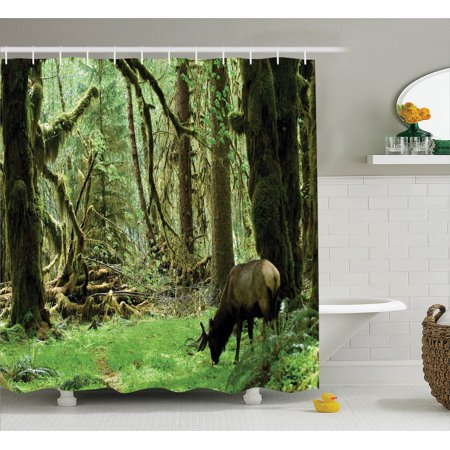 Rainforest Decorations Shower Curtain Set, Roosevelt Elk In Rainforest Wildlife National Park Washington Antlers Theme, Bathroom Accessories, 69W X 70L Inches, Green Brown By Ambesonne