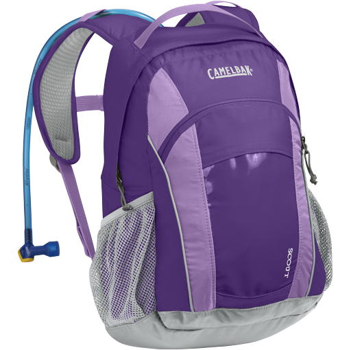 Camelbak Kids Scout 50 oz Pansy/African Violet Purple 62083