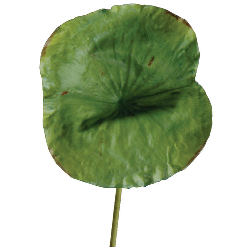 Distinctive Designs DIY Foliage Artificial Large Lotus Leaf Foliage Plant (Set of 6)