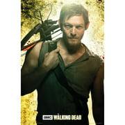 Walking Dead - Domestic Poster