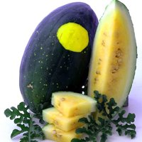 Organic Moon & Stars Yellow Flesh Watermelon - 2 g ~20 Seeds - Organic, Heirloom, Open Pollinated, Non-GMO, Farm & Vegetable Gardening / Fruit Seeds