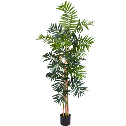 Bamboo Palm Silk Tree, 5'