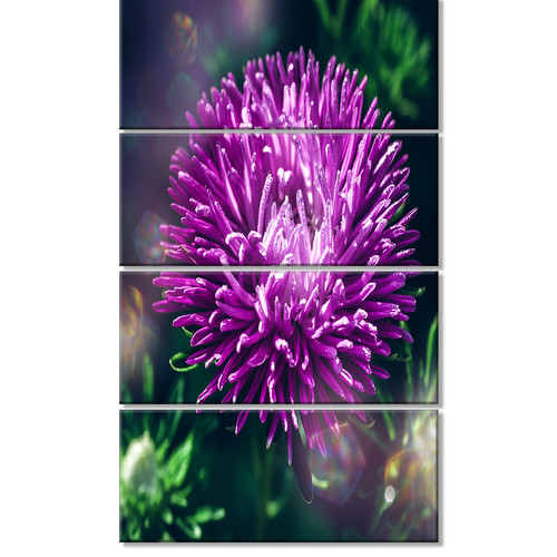 Design Art 'Chrysanthemum Flower with Bokeh' 4 Piece Graphic Art on Wrapped Canvas Set