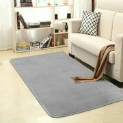 55x28 inch Rectangle Area Rug Soft Floor rug Shaggy Fluffy Rug Mat Anti-skid Floor Rug For Bedroom Living Dining Room