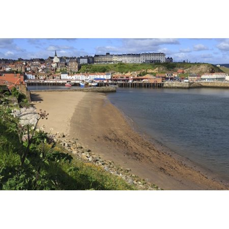 Tate Hill Beach, Cliff Side Wild Spring Flowers, View to Town and West Cliff Print Wall Art By Eleanor