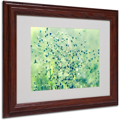 "Trademark Fine Art ""Spring Notes"" Framed Canvas Art by Beata Czyzowska Young"