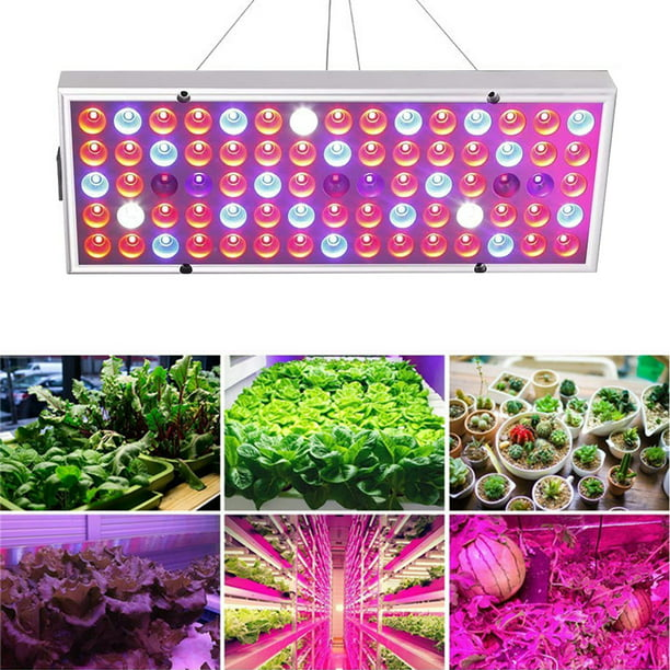 Led Grow Lights For Indoor Outdoor, Outdoor Grow Lights