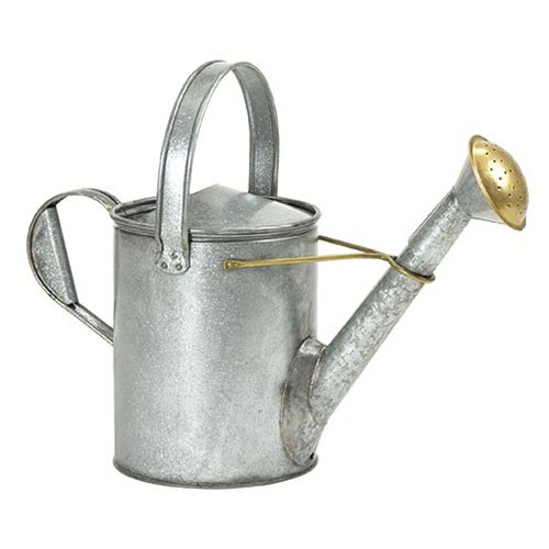 Achla th Century Short Necked Watering Can WC-11 Galvanized