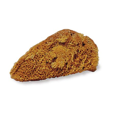 Jacks 10313 Natural Tack Sponge - image 1 de 1