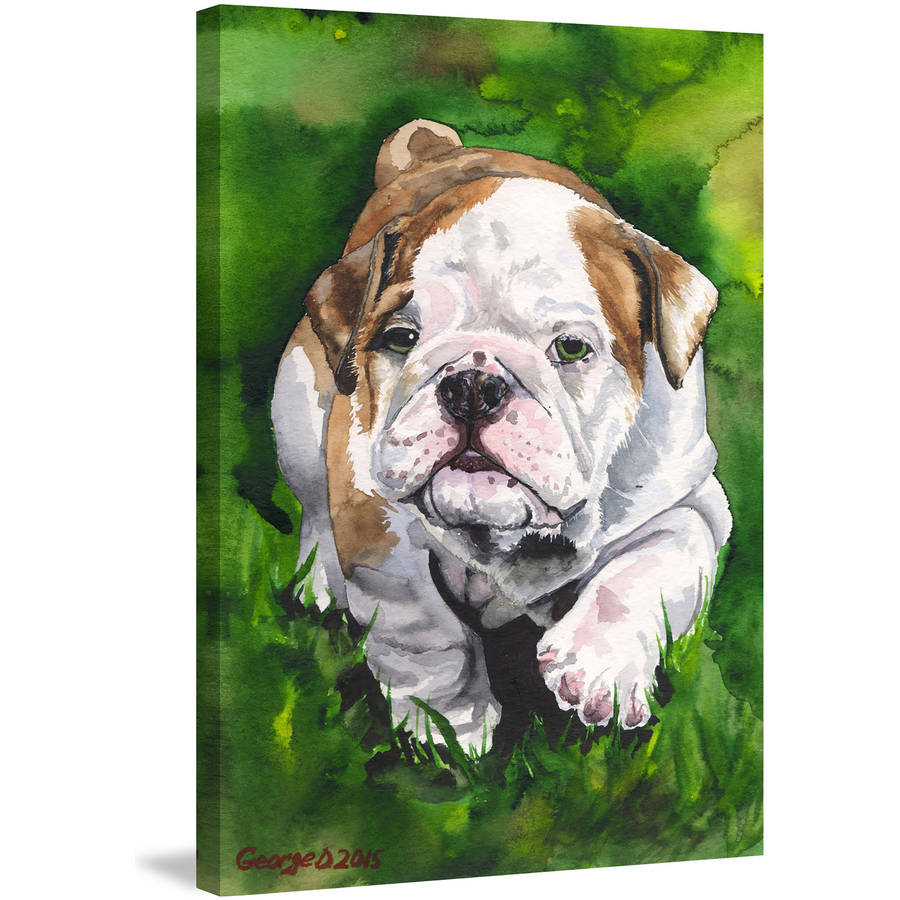 """English Bulldog Puppy"" Painting Print on Wrapped Canvas"