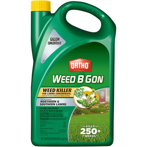 Ortho Weed B Gon For Lawns Concentrate 1 Gal