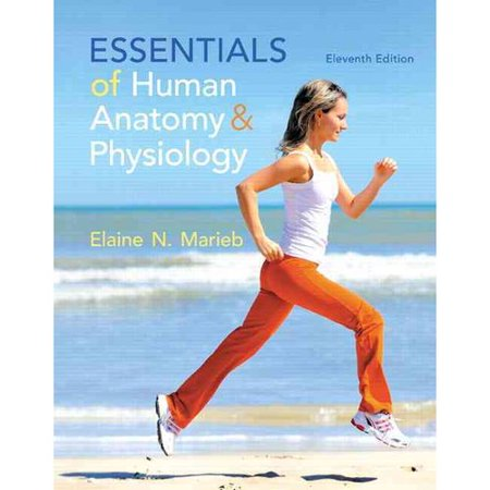 Essentials of Human Anatomy & Physiology by