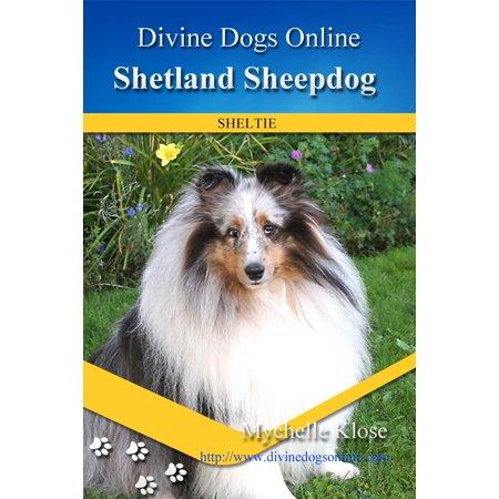 Shetland Sheepdog - eBook