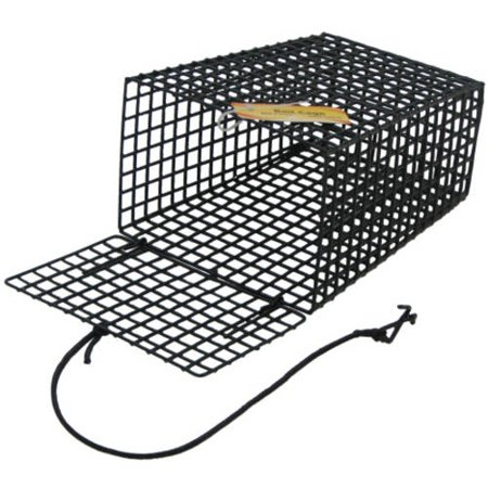 Beau Mac Crab Trap Bait Cage-Green