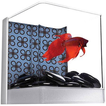 Aqua culture betta cube aquarium kit 3 gal for Betta fish tanks walmart