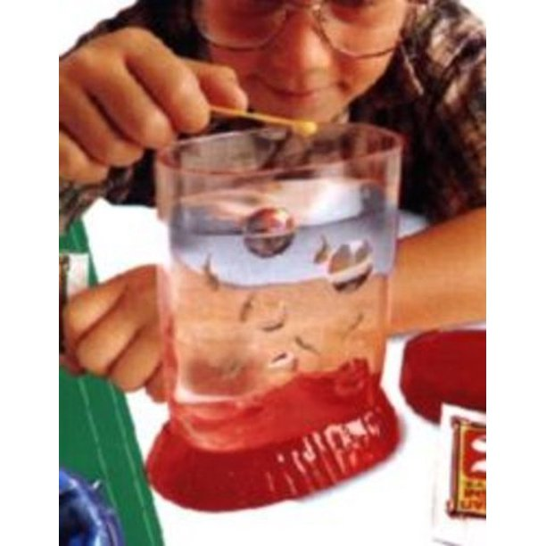 Sea Monkeys Grow Live Walmart Com Walmart Com