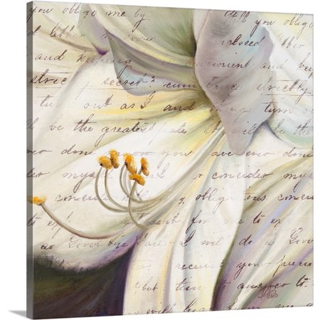 Great Big Canvas Patricia Pinto Premium Thick Wrap Canvas Entitled Lily Script I
