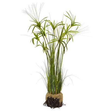 Papyrus Plant With Faux Soil on walmart pottery, walmart house fire, walmart orchids, walmart crafts, walmart clothing, walmart easter lilies, walmart house decorations, tall indoor plants, walmart flowers, walmart potatoes, walmart house gifts, walmart ferns, walmart trees, walmart kitchen, walmart shrubs, walmart house clothes, plant stands for multiple plants,