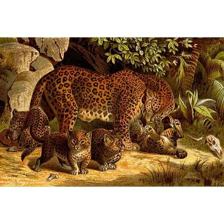 Temple Leopards (Leopard- Fine Art Canvas Print (20