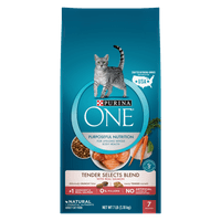 Purina ONE Tender Selects Blend With Real Salmon Adult Dry Cat Food - 7 lb. Bag