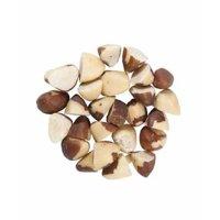 Sunbest Natural Raw Brazil Nuts Half-Broken 3Lbs / 48 oz. Resealable Bag