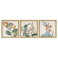 Paragon Garden I Framed Wall Art - Set of 3