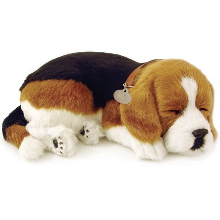Perfect Petzzz Beagle Breathing Puppy Dog Plush Set w/ Carrier Bed (Best Brush For Beagle)