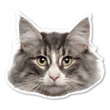 Embroidered Norwegian Forest Cat (Norwegian Forest Cat Magnet )