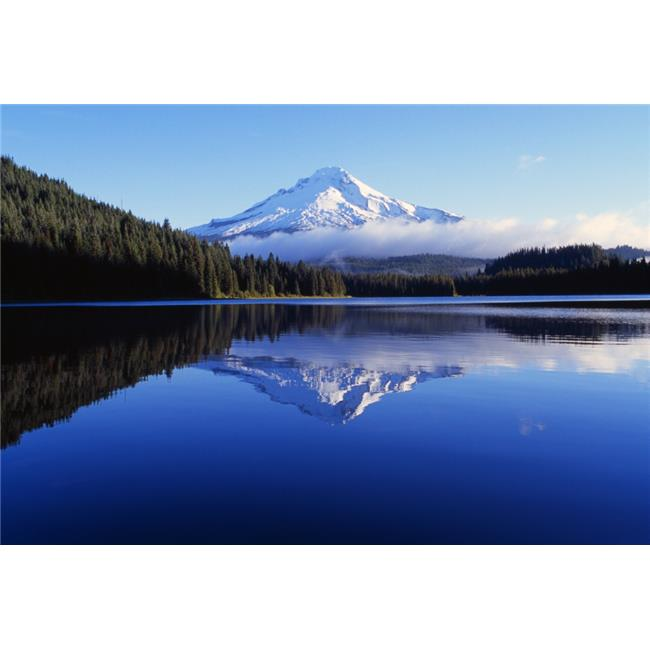 Trillium Lake with Reflection of Mount Hood Mount Hood National Forest Poster Print by Dan Sherwood, 18 x 12 - image 1 de 1