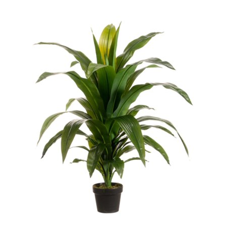 """Pack of 2 Potted Artificial Tropical Green Dracaena Fragans Plants 42"""""""