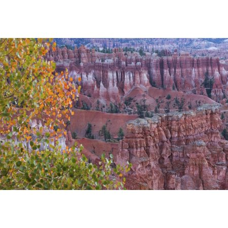 Bryce Canyon Amphitheater (Bryce Amphitheater Bryce Canyon National Park Utah United States of America PosterPrint)