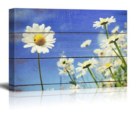 wall26 A lone Daisy faces Camera - Rustic Floral Arrangements - Pastels Colorful Beautiful - Wood Grain Antique - Canvas Art Home Decor - 16x24 inches