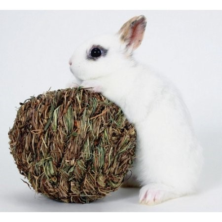 Marshall Pet Products Peter's Woven Grass Play Ball Small Animal Toy, Small
