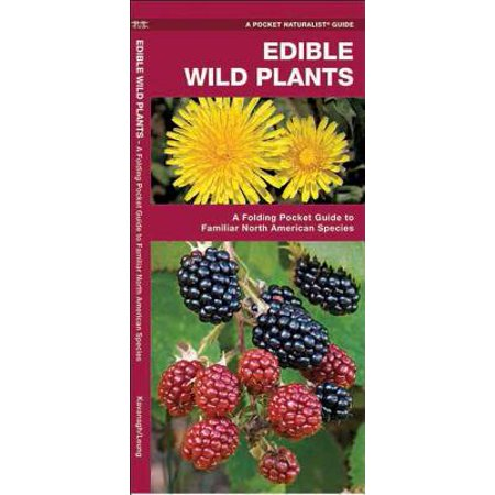 Edible Wild Plants : A Folding Pocket Guide to Familiar North American Species