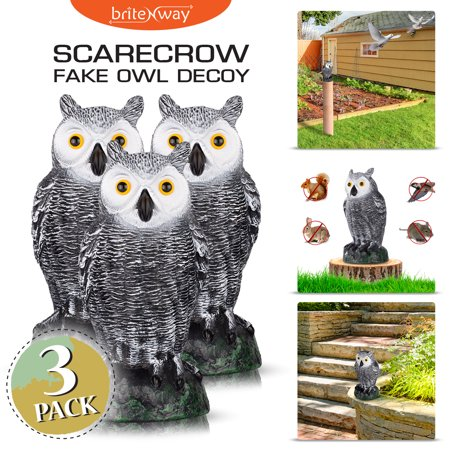 "briteNway Ultimate Scarecrow Owl Decoy Statue Realistic Fake Owl Outdoor Pest & Bird Deterrent, Hand-Painted Garden Protector - 10.5"" Hollow Design - Realistic Fake Hand"