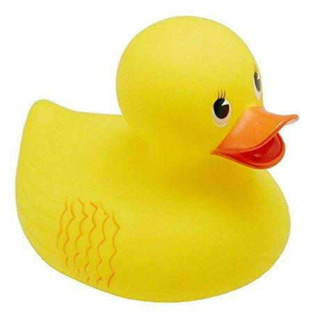 Small Rubber Ducks (Rhode Island Novelty 10