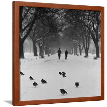 Regent's Park, London. Pigeons on a Snowy Path with People Walking Away Through an Avenue of Trees Framed Print Wall Art By John Gay - G-a-y Halloween London