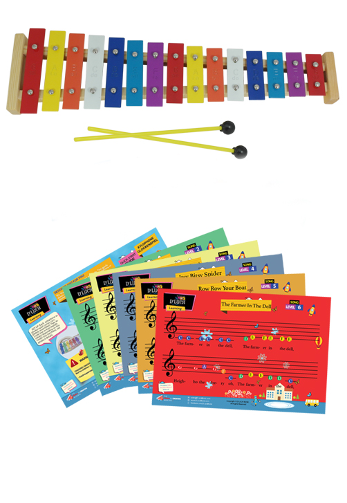 D'Luca 15 Note Children Xylophone Glockenspiel with Music Cards by D'Luca
