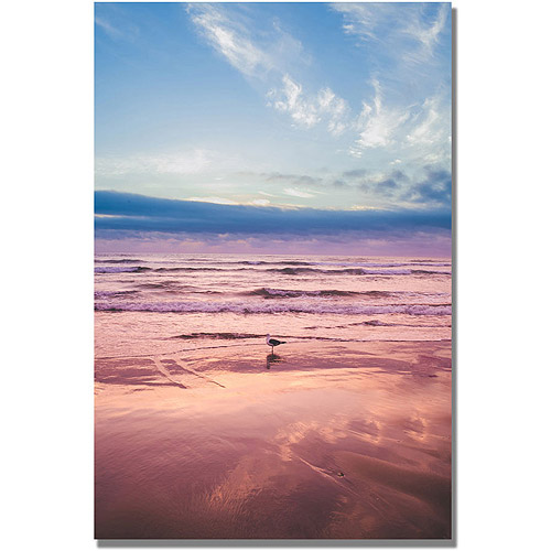 "Trademark Fine Art ""Seagull Reflections II"" Canvas Wall Art by Ariane Moshayedi"